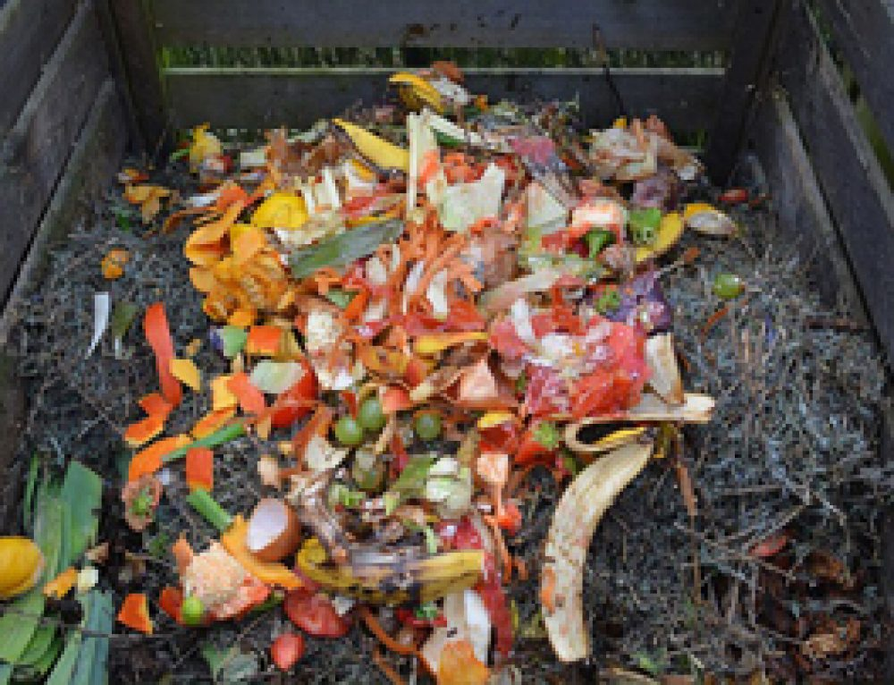10 Tips to Make a Quality Home Compost