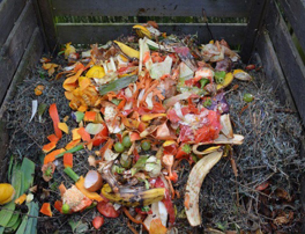 10 Consejos para Hacer un Compost Casero