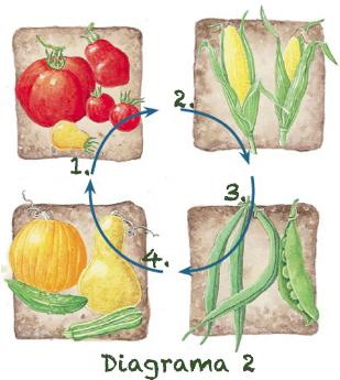 Rotacion de Cultivos Digrama 2