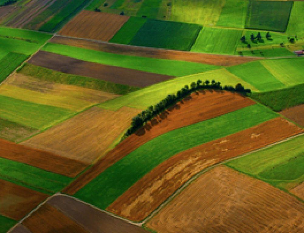 Libros y documentales sobre agricultura orgánica
