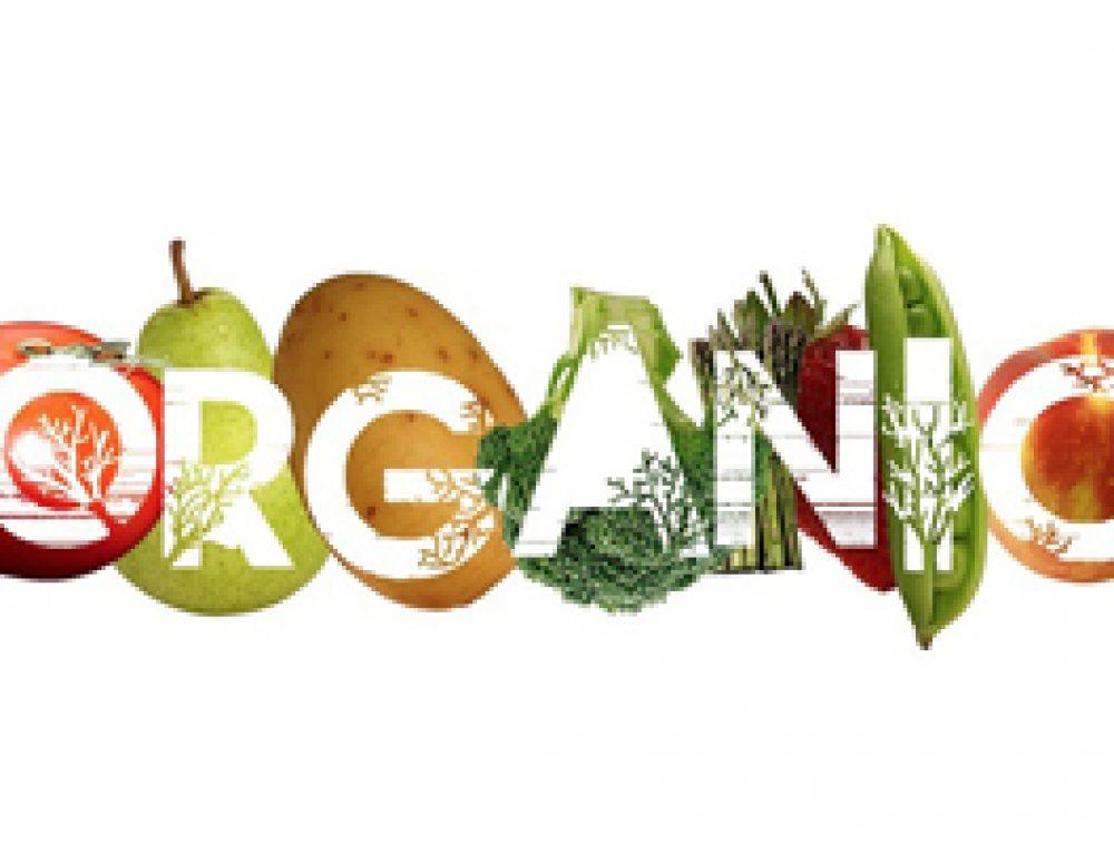 ¿Que significa organico?